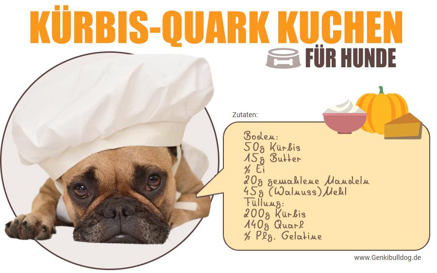 hundeblog genki bulldog rezept k rbis quark kuchen f r hundehundeblog genki bulldog abenteuer. Black Bedroom Furniture Sets. Home Design Ideas