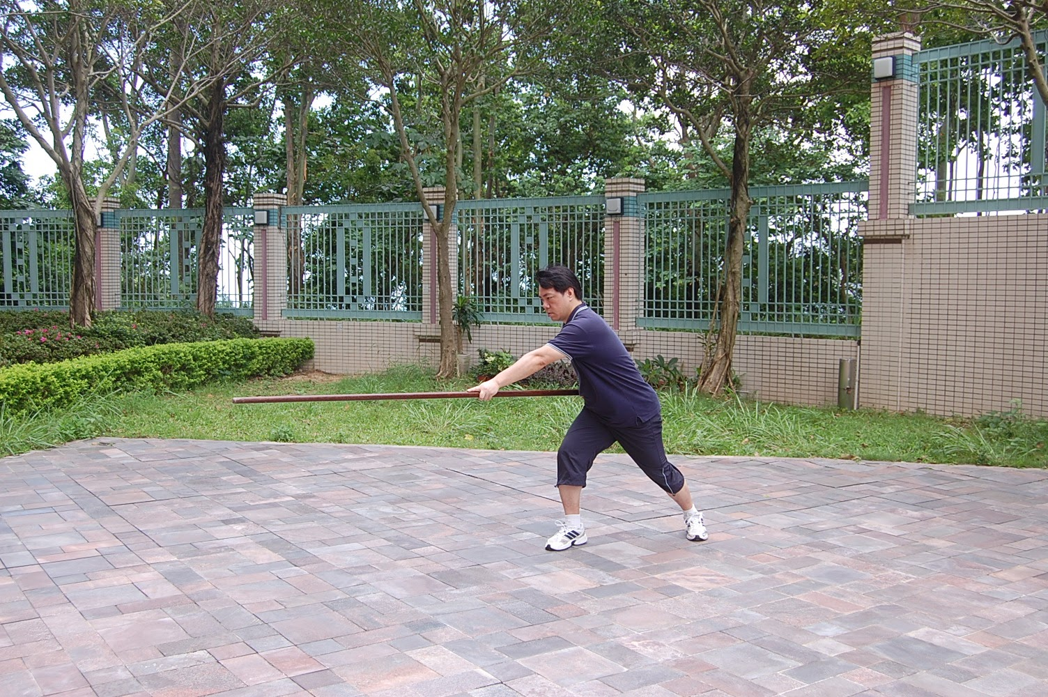 Tai Chi Spear 15 The completion style