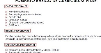 Formato De Curriculum Vitae Vacio Essay Writing