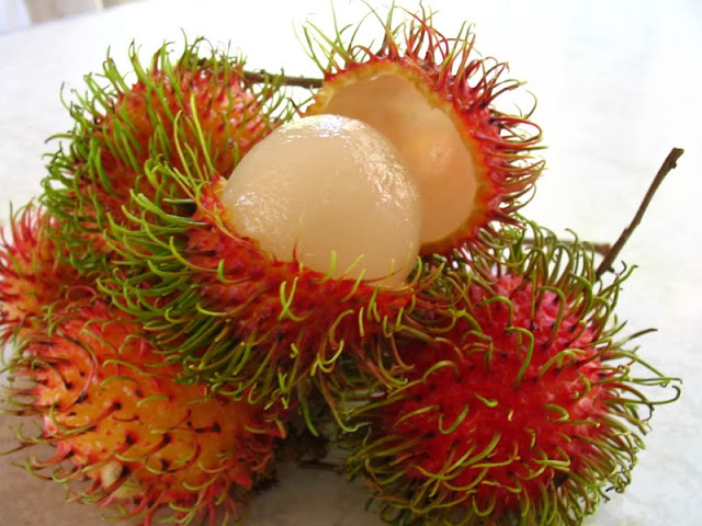 Top fruits you should not miss in Vietnam 8