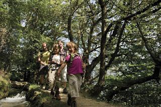 Einst versorgten die Waale im Vinschgau und Meraner Land trockene Wiesen mit Wasser. Heute sind die Waalwege beliebte Wanderpfade.
