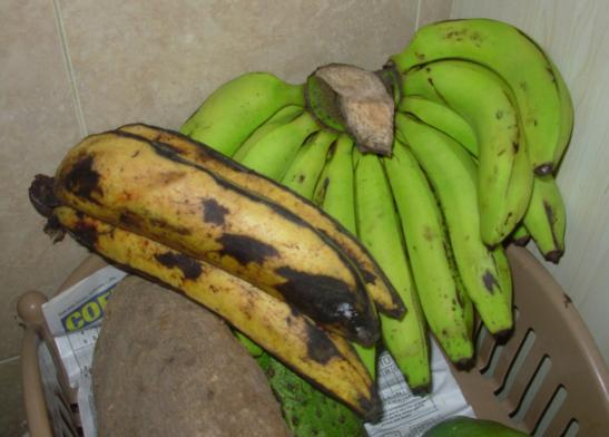 Al In Nigeria May 2011