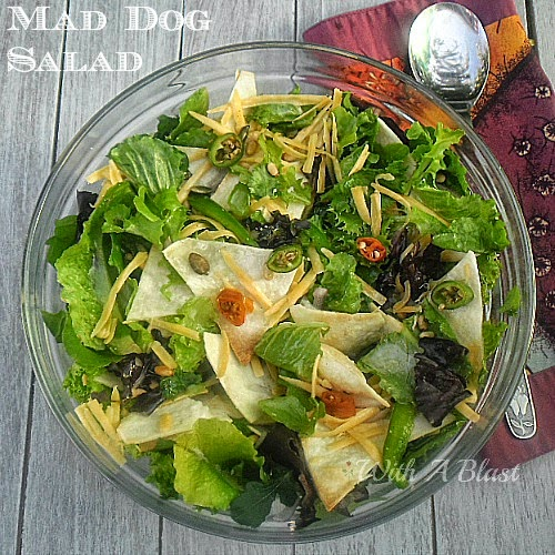 This Mad Dog Salad has it all ! Crunchy Tortilla Chips, with fresh herbs, lettuces, nuts, seeds and so much more ~ a must have recipe