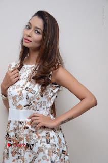 Telugu Actress Reshmi Thakur in Long Dress at Plus One ( 1) Audio Launch  0023.jpg