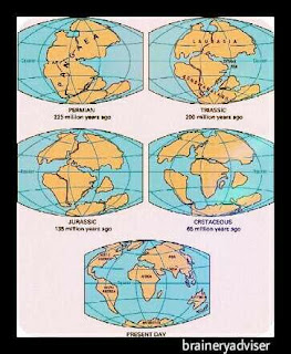 Continental-drift-theory-by-Alfred-Wegener