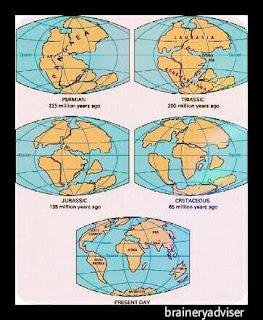 Continental-drift-theory-by-Alfred-Wegener