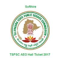 TSPSC AEO Hall Ticket