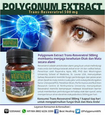 Manfaat Suplemen Resveratrol Untuk Otak dan Mata