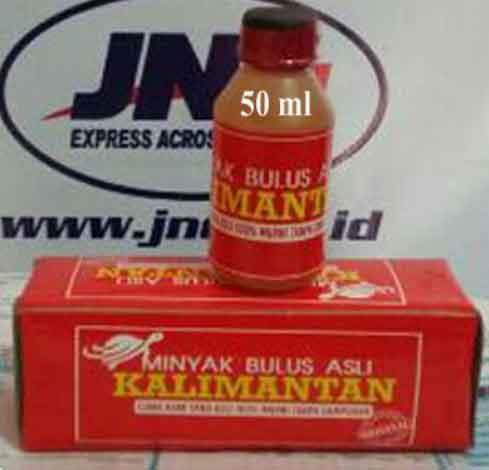 Minyak bulus asli 50 ml