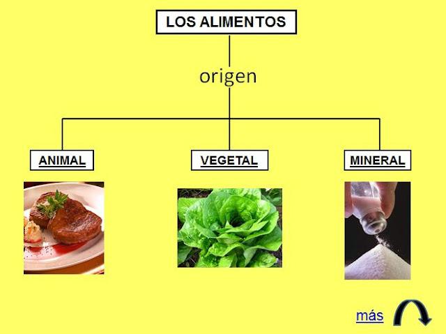APRENDER ES DIVERTIDO 1º Y 2º: Origen animal, vegetal y mineral de ...