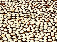 Pabrik Minyak Kelapa Kopra