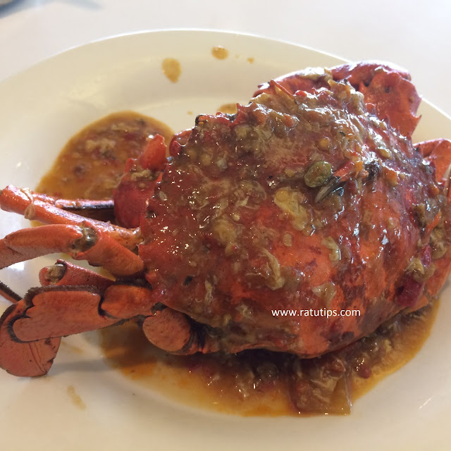 Sensasi Makan Kepiting Saus Padang Sekenyang Kenyangnya Di D'Cost, Enak Banget!