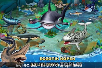 Shark World Hile APK