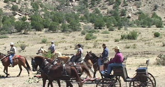 Denver Direct Horse Property By Tom Anthony