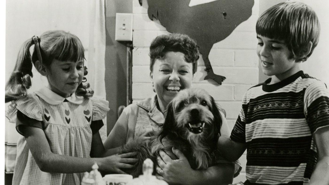 La Estrella Canina Benji Volvera En Un Remake En Netflix Con El