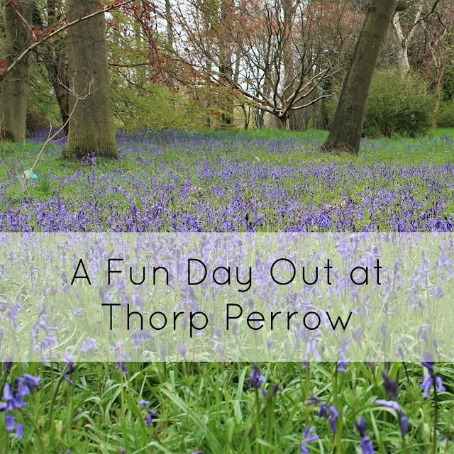 Thorp Perrow Review