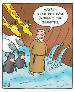 Funny Noah's Ark Cartoon Picture - Maybe I shouldn't have brought the termites image