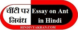 Essay on Ant in Hindi