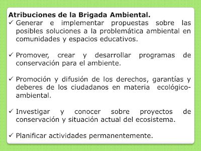 ¿De que se encarga una Brigada Ambiental?