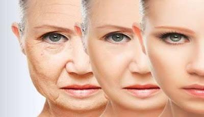 Senyawa Baru Ini Menjadi Kunci Atasi Penuaan Sel Manusia