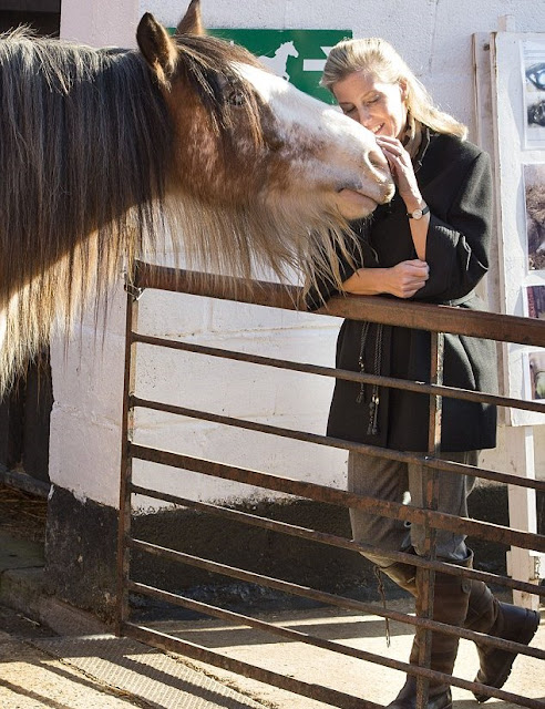 The Countess of Wessex during a visit to Remus Memorial Horse Sanctuary