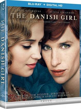 The Danish Girl 2015 Dual Audio 720p BRRip 847MB x264