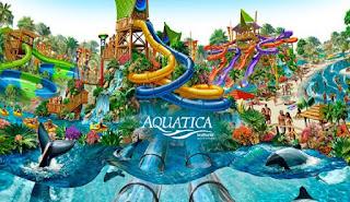 Aquatica Parque Acuatico Parque de Agua Tampa Bay Florida