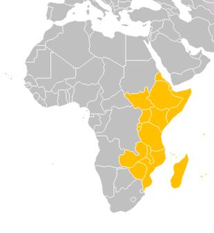 Cartina Dell Africa In Bianco E Nero.Riassunto Africa Orientale Scuolissima Com