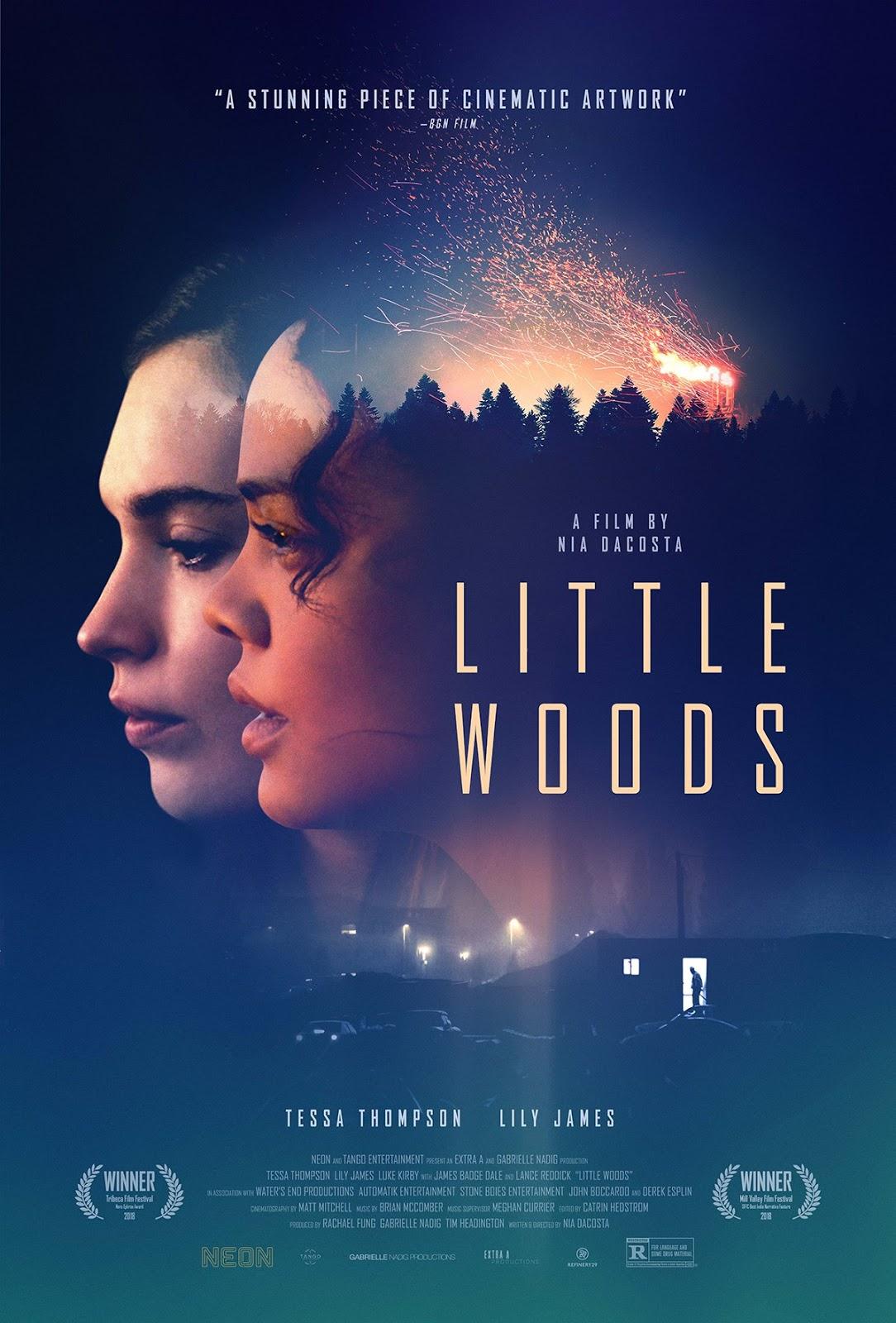 Resultado de imagem para little woods movie 2019