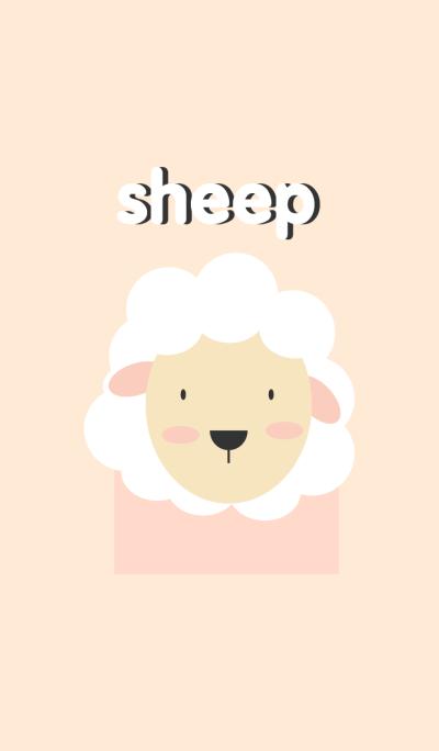 cute sheep theme