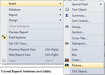 Crystal Reports 2010 is not inserting images in the report