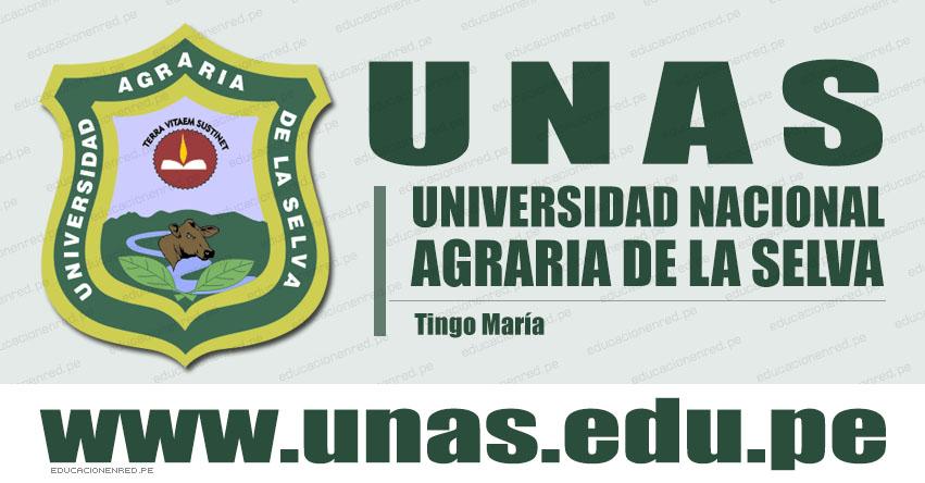 UNAS: Concurso Público Nacional Plazas Docentes (CRONOGRAMA) Universidad Nacional Agraria de la Selva - Tingo María - Huánuco - www.unas.edu.pe