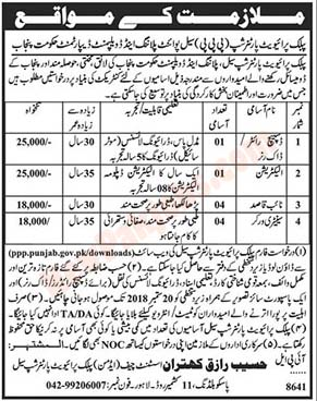 Latest Jobs In Public & Private Partnership Lahore