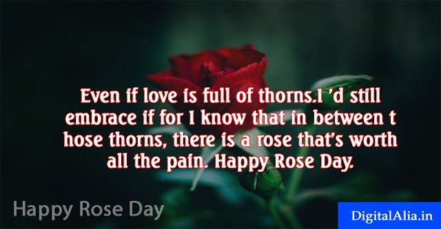 rose day messages, happy rose day messages, rose day wishes messages, rose day love messages, rose day romantic messages, rose day messages for girlfriend, rose day messages for boyfriend, rose day messages for wife, rose day messages for husband, rose day messages for crush