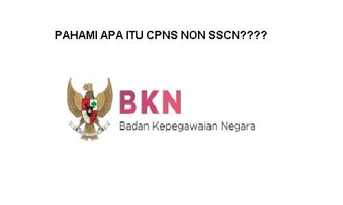 Pendaftaran CPNS Non SSCN