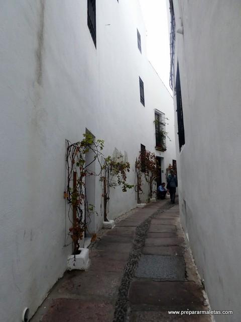 calleja del pañuelo en Córdoba