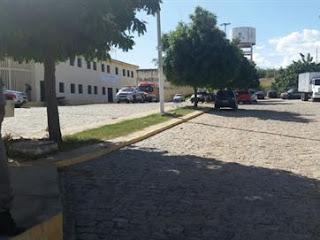 Gato é capturado dentro de prisão da Paraíba com dois celulares colados ao corpo