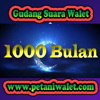 Suara Inap Walet 1000 Bulan