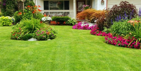 simple lawn and garden landscape for back yard design