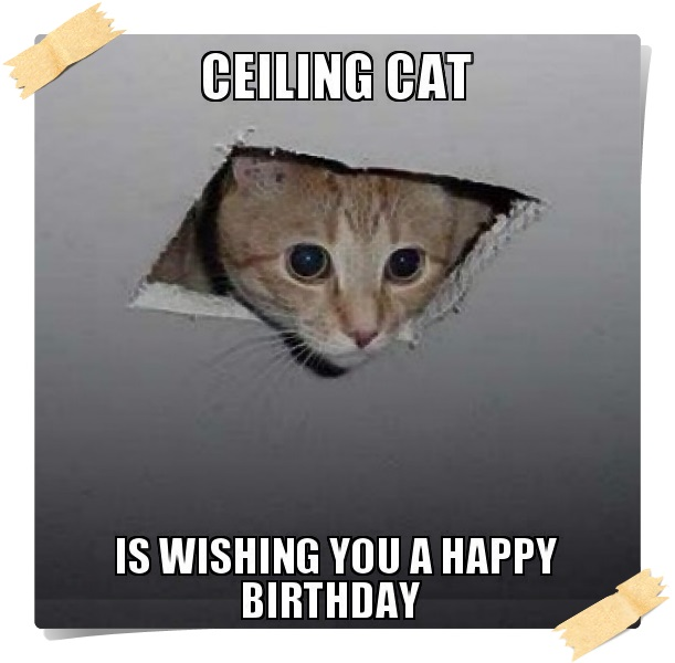 Funny Happy Birthday Meme Faces With Captions