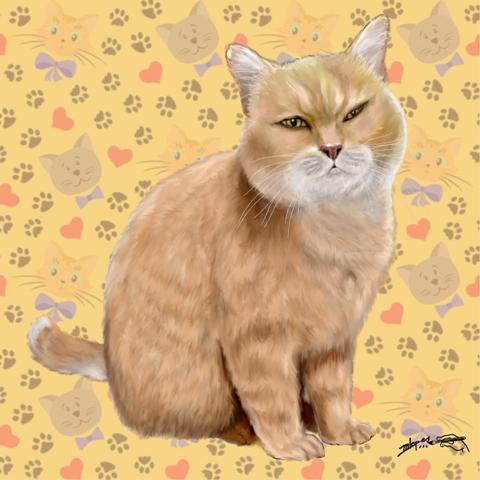 Seu gatinho reproduzido pelo Desenhista Marcelo lopes de Lopes