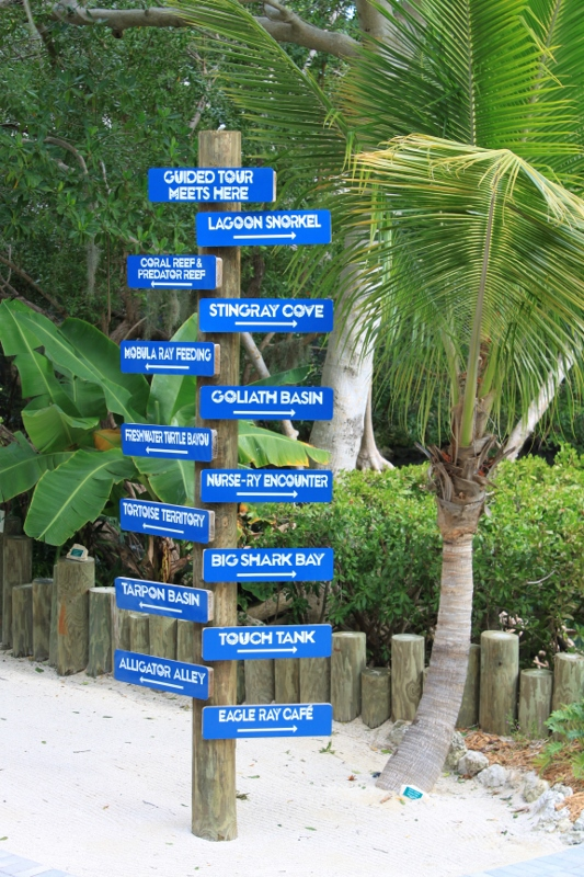 Florida Keys Aquarium Encounter