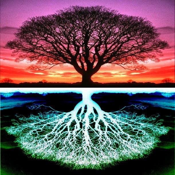 din cele mai vechi timpuri, pomului vietii i-au fost atribuite semnificatii foarte interesante