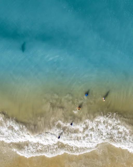 Fotografo salva la sua famiglia dall'attacco di uno squalo grazie ad un drone