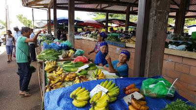 Lieux à visiter en Guyane : Marché de Cacao