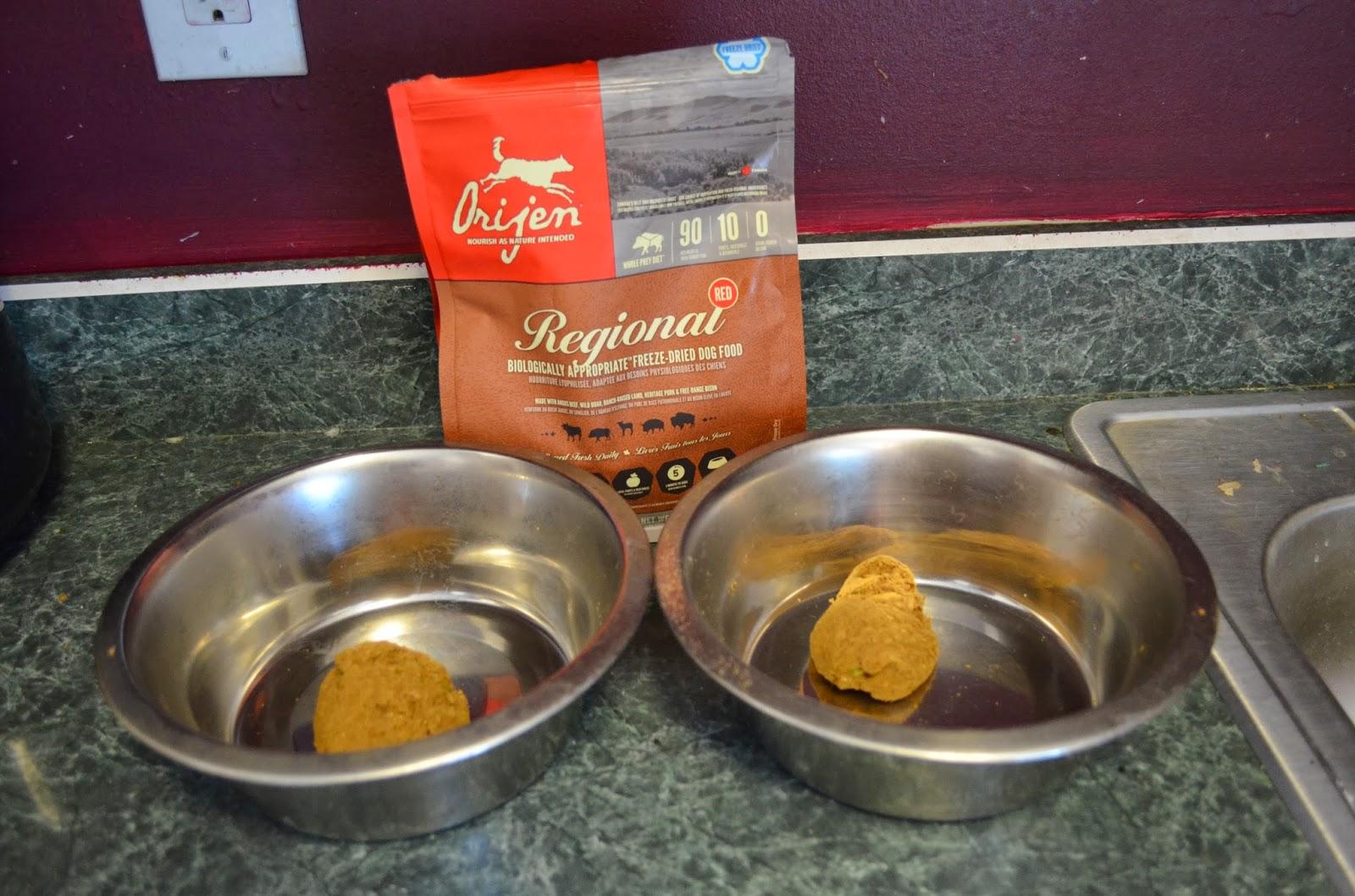 Orijen Pet Food Review