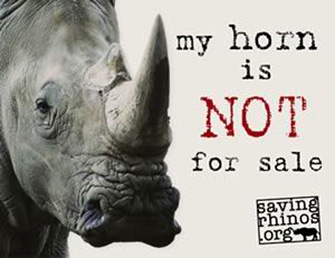 Help Save the Rhino