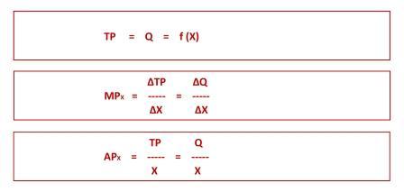 Hubungan Fungsi Produksi, Marginal Product, dan Average Product dalam Persamaan - www.ajarekonomi.com