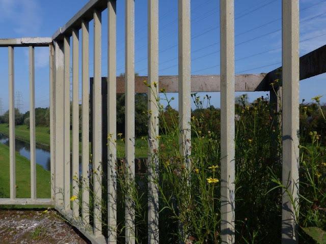 Emscher Landschaftspark Ruhrgebiet Ruhrpott Ausflug Oberhausen Haus Ripshorst Brücke Rhein-Herne-Kanal Blumen Renaturierung
