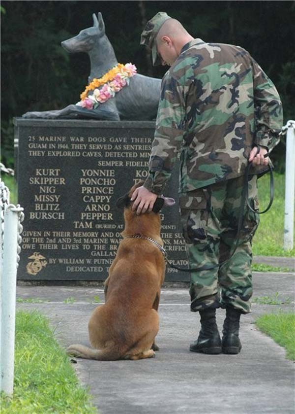 army dogs monument
